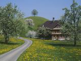 Switzerland  Zug  Road