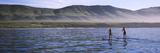 Tourists Paddleboarding in the Pacific Ocean  Santa Cruz Island  Santa Barbara County  Californi