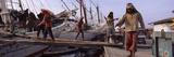 Manual Workers Carrying Bags on to a Ship  Sunda Kelapa  Jakarta  Indonesia