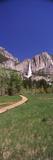 Waterfall in a Forest  Upper Yosemite Falls  Yosemite National Park  California  USA
