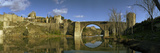 Arch Bridge across a River  San Martin Bridge  Tagus River  Toledo  Castilla La Mancha  Toledo P