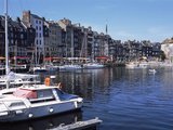 Boats Docked at a Harbor  Honfleur  Calvados  Normandy  France