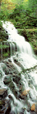 Ganoga Falls Ricketts Glenn State Park PA