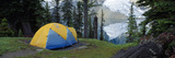 Camping Tent at the Lakeside  Floe Lake  Kootenay National Park  British Columbia  Canada