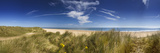 Marram Grass  Dunes and Beach  Winterton-On-Sea  Norfolk  England