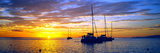 Silhouette of Sailboats in the Ocean at Sunset  Tahiti  Society Islands  French Polynesia