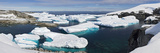 Icebergs Floating in the Sea  Petermann Island  Antarctica