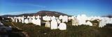 Cemetery in Fez  Morocco