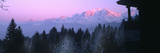 Trees with Snow Covered Mountains at Sunset in Winter  Combloux  Mont Blanc Massif  Haute-Savoie