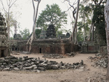 Ta Phrom  the Jungle Temple  Siem Reap  Cambodia