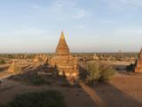 Temples and Stupas at Dusk  Bagan  Mandalay Region  Myanmar
