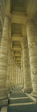 Colonnades of a Basilica  St Peter's Basilica  St Peter's Square  Rome  Italy