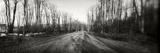 Road Passing Through Mountain  Pocono Mountains  Pennsylvania  USA