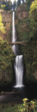 Waterfall in a Forest  Multnomah Falls  Columbia River Gorge  Multnomah County  Oregon  USA