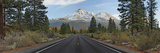 Road Leading Towards Mountain  Mt Shasta  Siskiyou County  California  USA