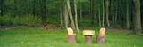Homemade Rustic Children's Log Table and Chairs in a Forest  Twinsburg  Summit County  Ohio  USA
