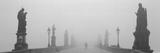 Statues and Lampposts on a Bridge  Charles Bridge  Prague  Czech Republic