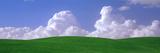 USA  Washington  Palouse  Wheat and Clouds