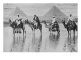 Camels with Native Riders on Board Stand in Reflective Floodwaters