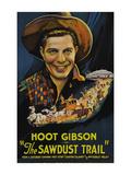The Sawdust Trail