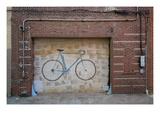 Bicycle Door