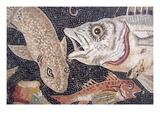 Fish Mosaic