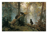 Bears in the Forest Morning