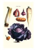Vegetables; Cabbage  Celery  Yam  Potato  Onion  Tomato  Horse Raddish