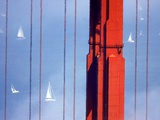 Golden Gate Bridge Sailboats