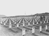 WWII Iwo Jima Usmc Cemetery