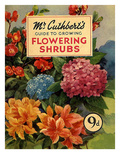 Mr Cuthberts Guide To Flowering  1953  UK