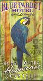 Blue Parrot Vintage