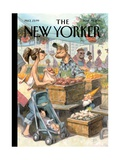 The New Yorker Cover - May 30  2011