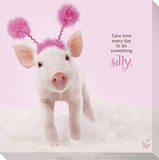 In The Pink! - Silly Pig