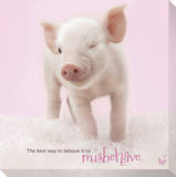In The Pink! - Winking Pig