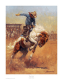 Dusty Bronc