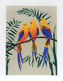Three Tropical Birds