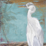 Tropic Heron II
