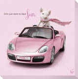 In The Pink! - Porsche Pig 2