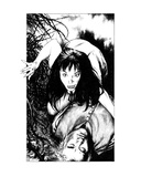 Vampyre (Revenge of the Vampire  Illustration no 24)