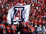 University of Arizona - Arizona Flag