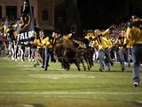 University of Colorado - Running with the Buffaloes