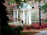 University of North Carolina - UNC's Old Well Framed by Spring Flowers