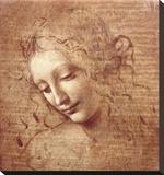 Female Head (La Scapigliata)  c1508