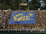 University of California  Berkeley - California Memorial Stadium