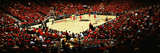 University of Arizona - McKale Center Red Out Panorama