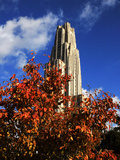University of Pittsburgh - Autumn Leaves at the Cathedral of Learning