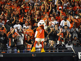 University of Miami - Miami Mascot