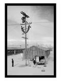 Line Crew at Work in Manzanar Reproduction d'art par Ansel Adams