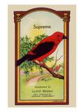Supreme Broom Label